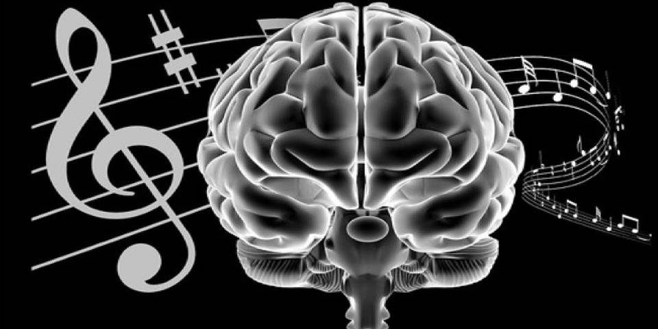 An Edited Image of Human Brain Surrounded By Musical Waves.